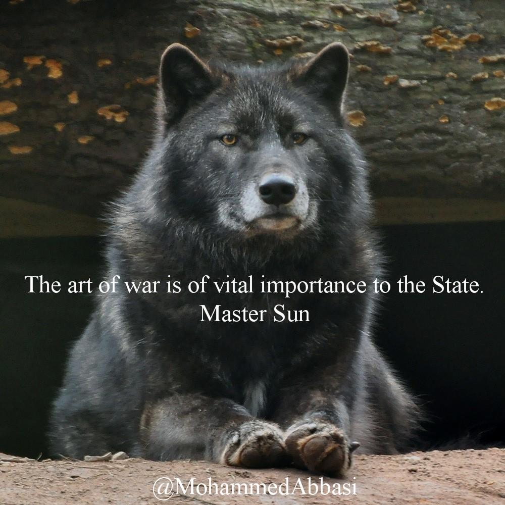 01 The Wolf.jpg