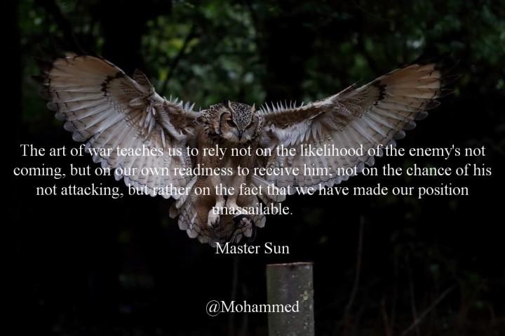08 The Owl.jpg