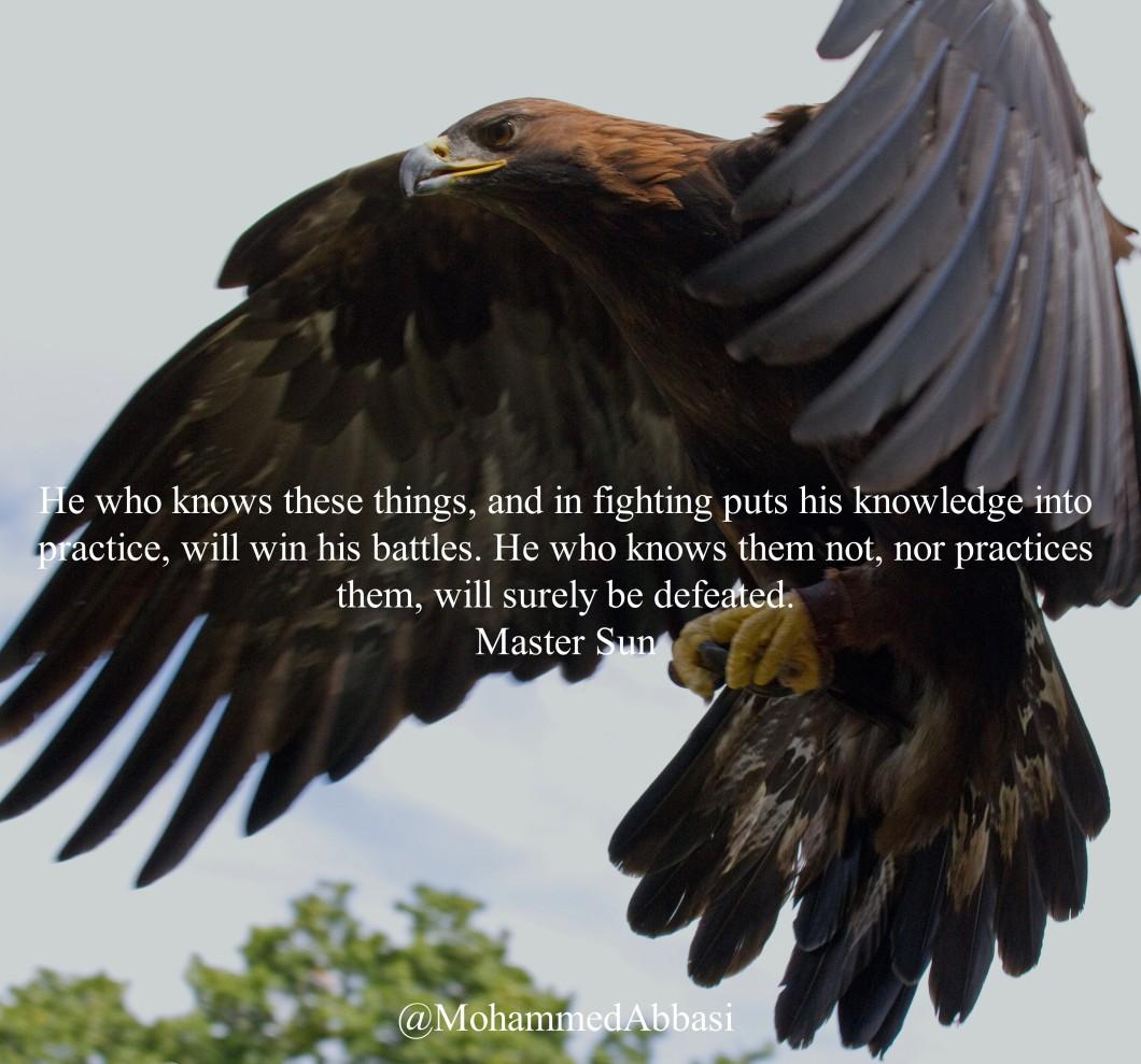 10 The Eagle.jpg